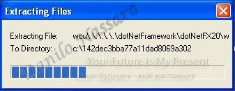 Installazione .net 3.5: estrazione files